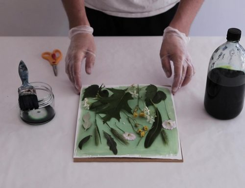 EDUCLAB: cianotipia – Il primo laboratorio per educare i bambini alla cultura